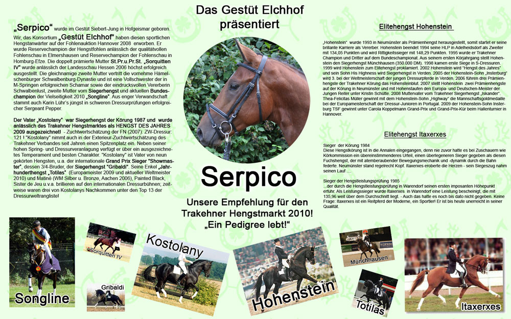 Serpico-Collage-Web